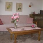 De woonkamer met bedbank