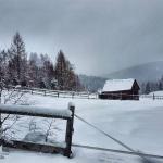 Winter (10)